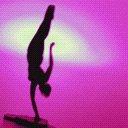 sprt gymnastics