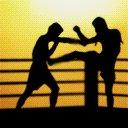 sprt kickboxing02