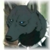 Wolfg25