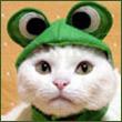 avatar 2425