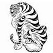 avatar 264