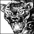 avatar 353