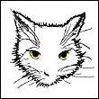 avatar 509