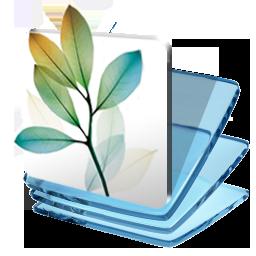 Folder Creative Suite