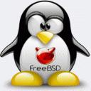 971 freebsd