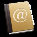 icons 493