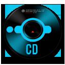 CD2 inv