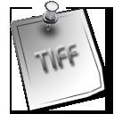 tiff white 1