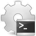 application x executable script