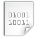 application x executable