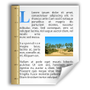 x office document template