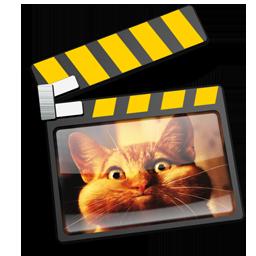 iMovie cat