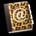JaguarAddressBook