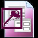 Microsoft Access File